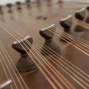 سنتورنوازان موسیقی چاووش شیراز