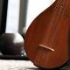 سه تار نوازان موسیقی چاووش شیراز